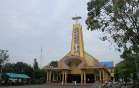 Giáo xứ Long Tâm: Chầu Thánh Thể thay Giáo phận