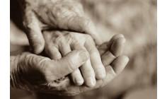 Giá trị của Lòng Biết Ơn