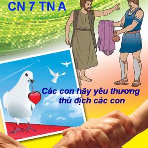 CÁC BÀI SUY NIỆM LỜI CHÚA  CHÚA NHẬT VII THƯỜNG NIÊN – NĂM A