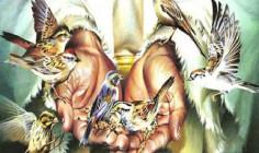 Cầu nguyện trước Thánh Thể: Ngày 26.02.2017 – Chúa nhật VIII Thường niên – Mt 6,24-34