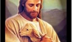 Nếu Chúa Giêsu tư vấn hôn nhân