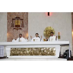 Tin ảnh: Giáo xứ Chánh Toà Bà Rịa:  Thánh lễ kỷ niệm ngày cung hiến nhà thờ  (2010- 2017)