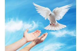 Cầu nguyện trước Thánh Thể- Ngày 21.5.2017 – Chúa nhật VI Phục Sinh – Ga 14,15-21