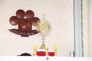 Tin ảnh: Giáo họ Phước Ân: Chầu Thánh Thể thay Giáo phận