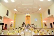 Tin ảnh: Giáo xứ Hòa Lâm: Bế mạc Tháng Hoa 2017
