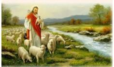 CÁC BÀI SUY NIỆM LỜI CHÚA  CHÚA NHẬT IV PHỤC SINH – NĂM A