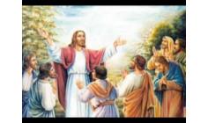 Cầu nguyện trước Thánh Thể- Ngày 25.6.2017 – Chúa nhật XII Thường niên – Mt 10,26-33