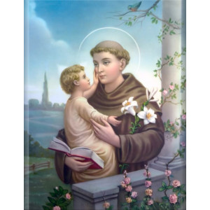 Ngày 13-06 Thánh ANTÔN PADUA  Linh mục và tiến sĩ Hội Thánh (1195 - 1231)