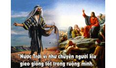 CÁC BÀI SUY NIỆM LỜI CHÚA  CHÚA NHẬT XV THƯỜNG NIÊN – NĂM A