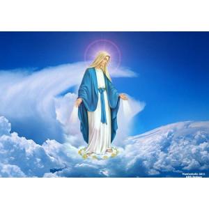 LỄ ĐỨC MARIA HỒN XÁC LÊN TRỜI 2017 - Mẹ về trời, hy vọng và hạnh phúc của chúng ta