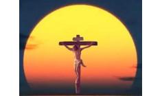 Thánh Giá là nguồn tình yêu và hi vọng