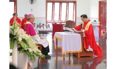 Giáo xứ Vinh Trung: Đón chào vị chủ chăn mới Giuse Trần Hữu Lâm