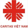 caritas vietnam