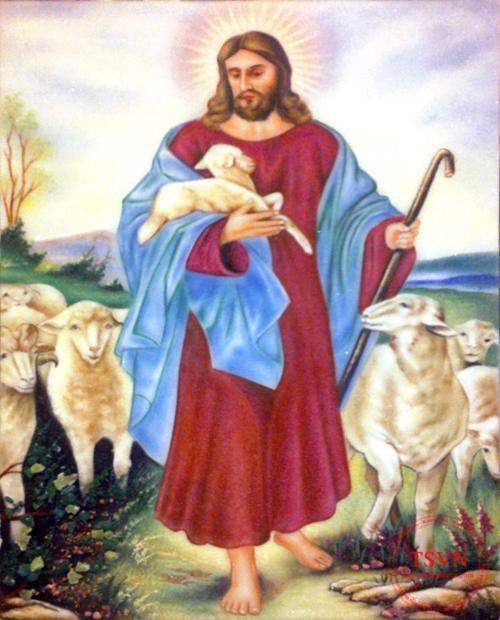 CHÚA GIÊSU MỤC TỬ-Suy niệm CHÚA NHẬT 16 THƯỜNG NIÊN –B