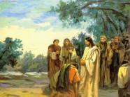 Giáo Lý Phúc Âm Chúa Nhật XXVIII TN C