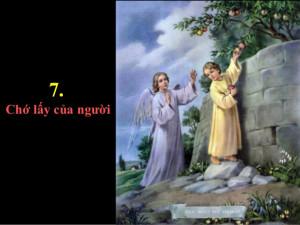 Tìm hiểu Sách Giáo lý Hội Thánh Công giáo – Phần III: Đời sống mới trong Đức Kitô - Bài 45. Điều răn thứ bảy