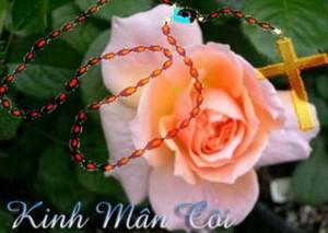 Đức Mẹ Mân Côi Lm. Inhaxiô Hồ Thông