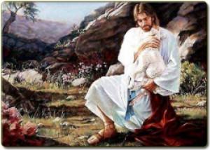 Suy niệm Năm Thánh Lòng Thương Xót – Bài 5: Đức Giê-su, vị Mục Tử Nhân Lành