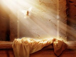 ĐGH Phanxicô: Lòng Thương Xót và Tình Yêu Đã Chiến Thắng Tội Lỗi