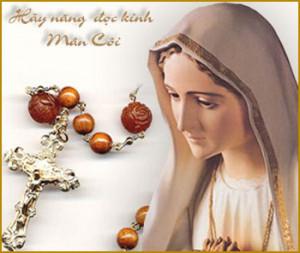 CÁC BÀI SUY NIỆM LỜI CHÚA LỄ ĐỨC MẸ MÂN CÔI