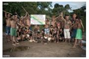Đức Thánh Cha triệu tập Thượng hội đồng Giám mục về Amazon vào năm 2019