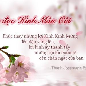 Tháng Mân Côi, suy niệm về Mẹ