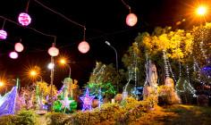 PHÓNG SỰ ẢNH:  Bầu khí chuẩn bị Giáng sinh tại một số giáo xứ trong Giáo hạt Xuyên Mộc