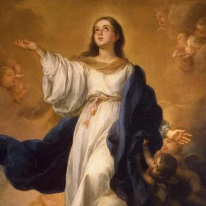 Mẹ Vô Nhiễm