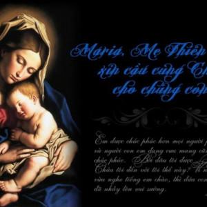 Maria - Mẹ Thiên Chúa