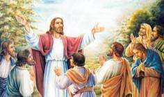 CÁC BÀI SUY NIỆM LỜI CHÚA  CHÚA NHẬT V THƯỜNG NIÊN – NĂM B