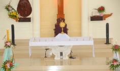 Giáo xứ Hòa Lâm: Thánh lễ khai mạc ngày Chầu Thánh Thể thay Giáo phận- Ngày 18.03.2018