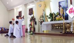 Giáo Xứ Hải Sơn: Chầu Thánh Thể thay Giáo Phận