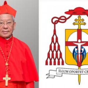 Đức hồng y Phêrô Nguyễn Văn Nhơn 80 tuổi: số Hồng y cử tri còn 115 vị