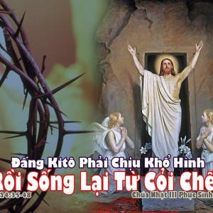 CÁC BÀI SUY NIỆM LỜI CHÚA  CHÚA NHẬT III PHỤC SINH – NĂM B