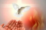 Chúa Thánh Thần: Thần Linh sáng tạo