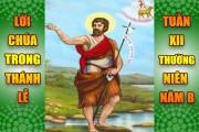 BẢN VĂN BÀI ĐỌC TRONG THÁNH LỄ- TUẦN XII THƯỜNG NIÊN – NĂM B