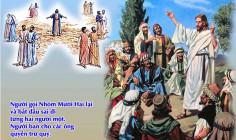 CÁC BÀI SUY NIỆM LỜI CHÚA  CHÚA NHẬT XV THƯỜNG NIÊN – NĂM B