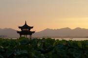 ĐGH nhận cho 8 giám mục Trung Quốc được hiệp thông