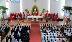 Đền Thánh Bãi Dâu: Giáo hạt Vũng Tàu học hỏi Năm Thánh kính các Thánh Tử đạo Việt Nam