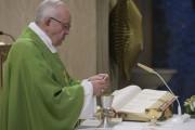 Đức Thánh Cha: Chúa Thánh Thần là men của Kitô hữu
