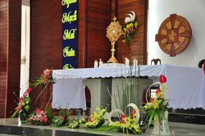 Gx. Hòa Hội – Chầu Thánh Thể thay giáo phận