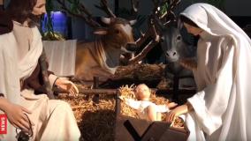Hơn 100 máng cỏ được trưng bày tại Vatican: Giáng sinh từ khắp nơi trên thế giới