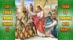 BẢN VĂN BÀI ĐỌC TRONG THÁNH LỄ  TUẦN II THƯỜNG NIÊN – NĂM C