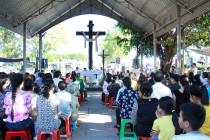 Tin Ảnh: Gx. Lam Sơn: Thánh lễ kính nhớ tổ tiên và ông bà cha mẹ- Mùng 2 Tết 2019
