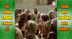 BẢN VĂN BÀI ĐỌC TRONG THÁNH LỄ  TUẦN VIII THƯỜNG NIÊN – NĂM C