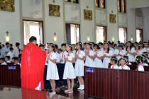 Giáo xứ Chánh Tòa: 162 thiếu nhi Rước Lễ Lần Đầu