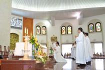Giáo xứ Chánh Toà: Chầu Thánh Thể thay Giáo phận 2019
