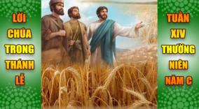 BẢN VĂN BÀI ĐỌC TRONG THÁNH LỄ TUẦN XIV THƯỜNG NIÊN – NĂM C