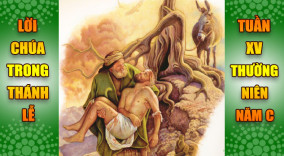 BẢN VĂN BÀI ĐỌC TRONG THÁNH LỄ TUẦN XV THƯỜNG NIÊN – NĂM C