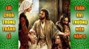 BẢN VĂN BÀI ĐỌC TRONG THÁNH LỄ TUẦN XVI THƯỜNG NIÊN – NĂM C